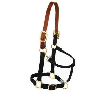 Weaver Leather 35-6025-BK 1 Inch Horse Blk Nyl Halter