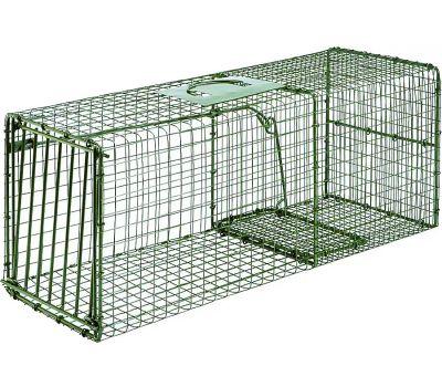 Duke Pecan 1112 Cage Trap, 30 in L, 12 in W, 12 in H