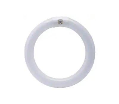 Feit Electric FC8T9/D Fluorescent Bulb, 22 W, T9 Circline Lamp, G10q 4-Pin Lamp Base, 980 Lumens, Daylight Light