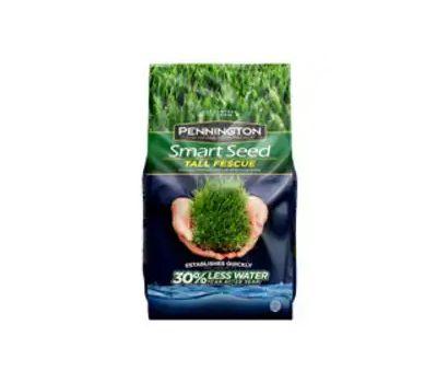 Pennington Seed 100543722 100526675 Tall Fescue Grass Seed, 3 Pound Bag
