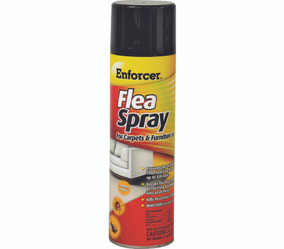 Zep ENFS14 Enforcer Carpet And Furniture Flea Spray 14 Ounce