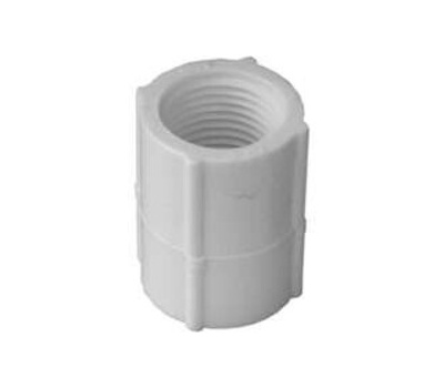 Lasco Fittings 30125 1/2 Inch White Threaded Coupling FIP X FIP