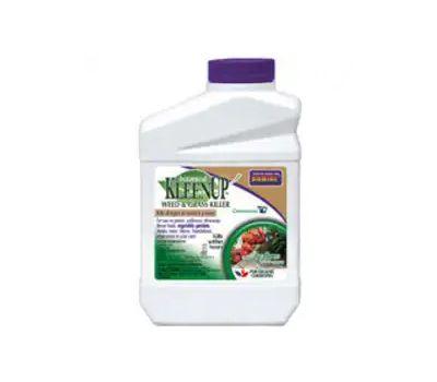 Bonide 7503 Botanical Kleenup Concentrated Weed and Grass Killer, 1 Pt