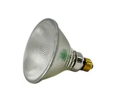 Sylvania 10725 120 Watt Outdoor Reflector Floodlight Par 38