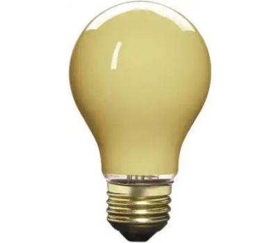 Globe Electric 70801 WestPointe 60 Watt A19 Bug Bulb