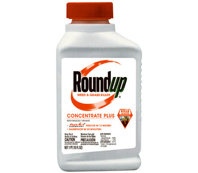 Roundup 5005510 Round Up Pint Concentrate Plus