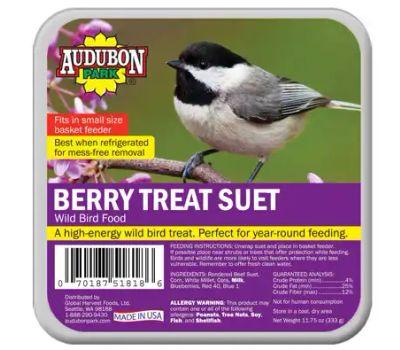 Global Harvest 13066 1844 Wild Bird Food, Berry Treat Flavor, 0.734 Pound