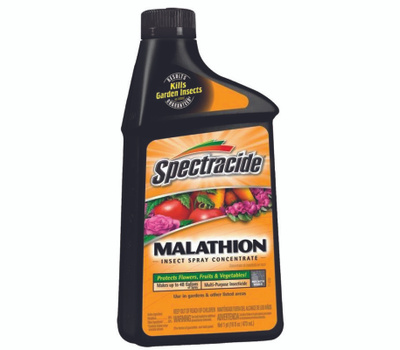 Spectrum 60900 Spectracide Malathion Insect Spray, Liquid, Spray Application, 16 Ounce