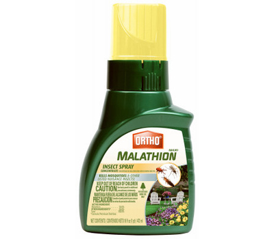 Ortho 0165610 Max Insect Concentrate, Spray Application, Indoor, Outdoor, 16 Ounce Bottle