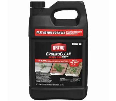 Ortho 0433610 Vegetation Killer, Liquid, Clear/Light Green, 1 Gal