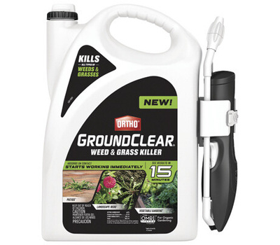 Ortho 4613264 Groundclear Weed and Grass Killer, Liquid, Spray Application, 1 Gal Bottle