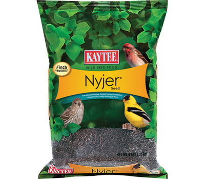Kaytee 100061916 3 Pound Nyjer Thistle Seed