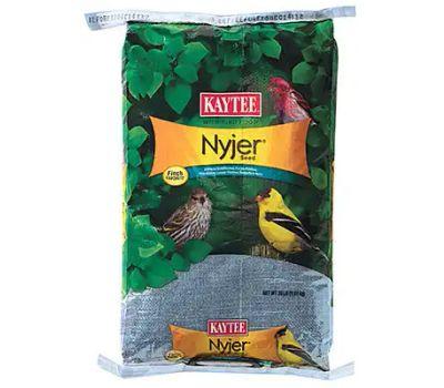 Kaytee 100033693 20 Pound Nyjer Thistle Seed