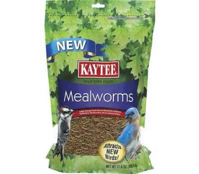Kaytee 100508146 17.6 Ounce Mealworm Pouch