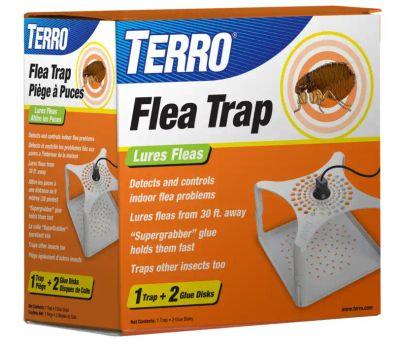 Terro T230 Victor The Ultimate Flea Trap