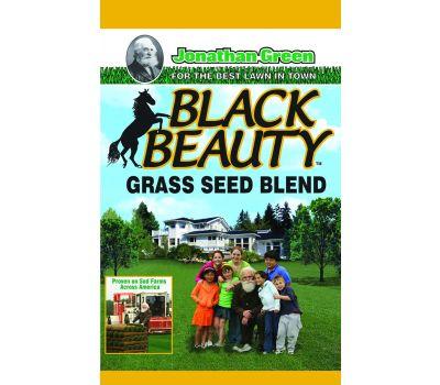 Jonathan Green 10315 Black Beauty Black Beauty Grass Seed, 25 Pound Bag