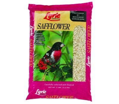 Lebanon Seaboard 2647430 Lyric 5 Pound Lyric Safflower Seed