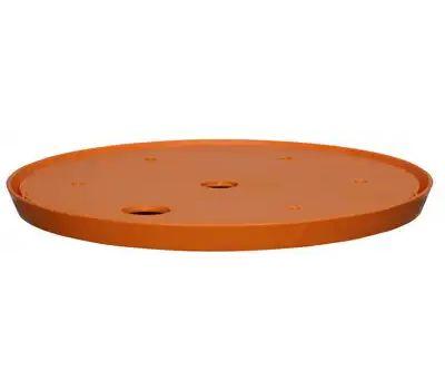 Bloem T6320-6 10 Inch Ups-A-Daisy