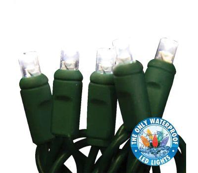 Holiday Bright Lights LEDBX-WA50-PW6 Light Set, 50 -Lamp, Led Lamp, Pure White Lamp, 50000 Hr Average Life, 26 Ft L